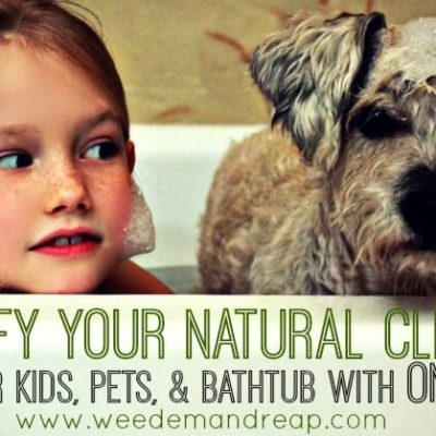 Simplify your Natural Cleaner: Clean your kids, pets, & bathtub with ONE product!