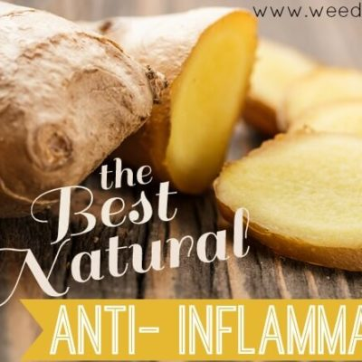 The BEST Natural Anti-Inflammatory