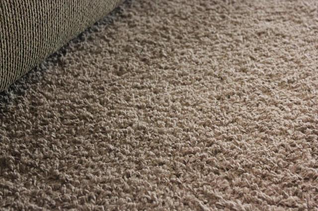 Homemade Peppermint Carpet Deodorizer