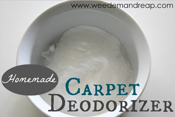 homemade-carpet-deodorizer