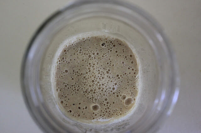 Feeding your Natural Yeast STARTER