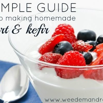 A Simple Guide to Making Homemade Yogurt & Kefir