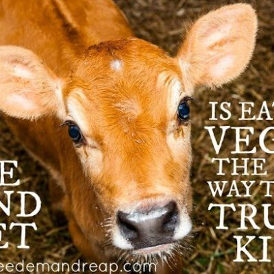 The Kind Diet: Is eating VEGAN the only way to be truly kind?