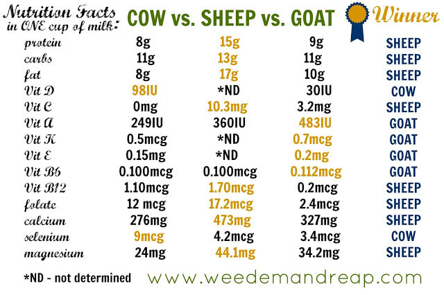 nutrition facts of cow milk, sheep milk and goat milk