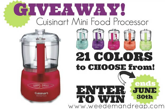 -mini-food-processor-giveaway