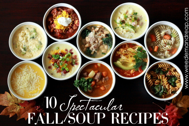 10 Spectacular Fall Soup Recipes