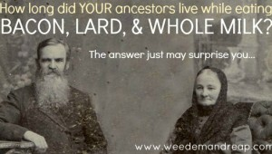 how long did ancestors live