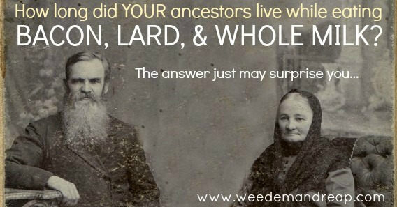 How Long Did YOUR Ancestors Live While Eating Bacon, Lard & Whole Milk? | Weed 'Em and Reap