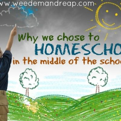 Why we chose to Homeschool in the middle of the school year.