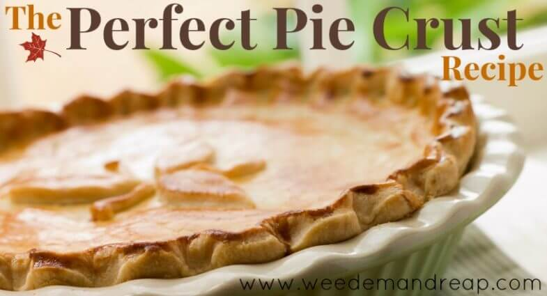 The PERFECT Pie Crust Recipe!