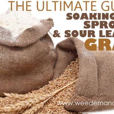 The Ultimate Guide to Soaking, Sprouting, & Sour Leavening Grains – Part 1
