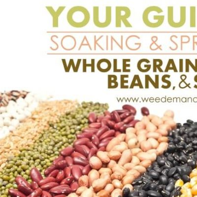 Your Guide to Soaking & Sprouting Whole Grains, Beans, Nuts, & Seeds