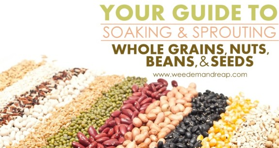 Your Guide to Soaking & Sprouting Whole Grains, Nuts, Beans, & Seeds