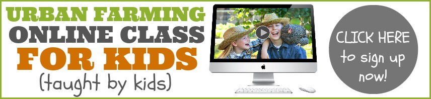 sign up for an urban farming online class for kids