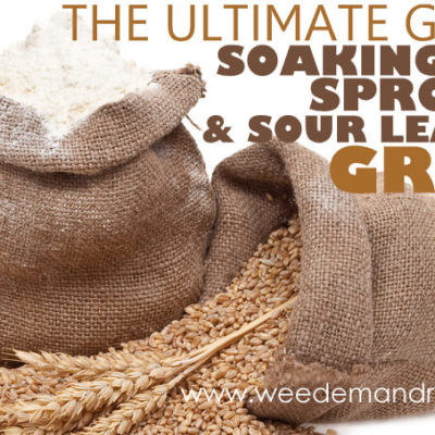 The Ultimate Guide to Soaking, Sprouting, & Sour Leavening Grains – Part 2
