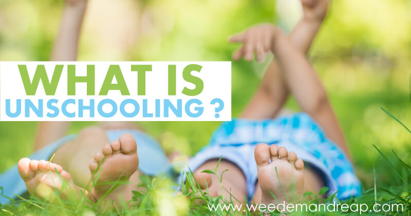 What is Unschooling?