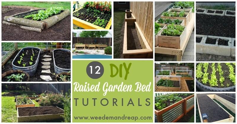 raised garden diy