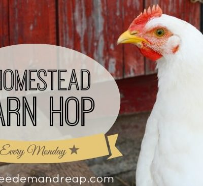 Homestead Barn Hop #161