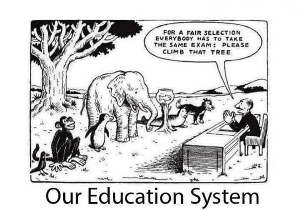 political cartoon about the educational system