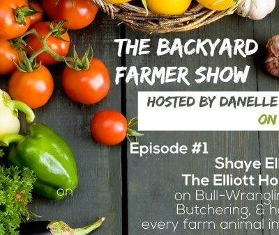 Introducing my new Radio Show, The Backyard Farmer!