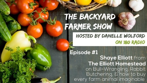 The Backyard Farmer Show - Episode #1: Shaye Elliott of The Elliott Homestead on Bull-Wrangling, Rabbit Butchering, & how to buy every farm animal imaginable.