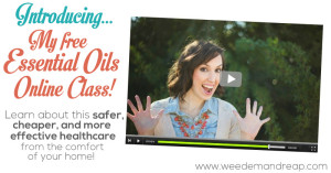 Introducing my FREE ESSENTIAL OILS ONLINE CLASS!