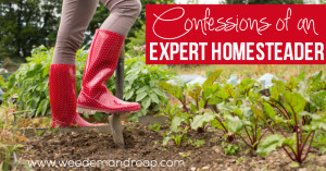 Confessions of an Expert Homesteader