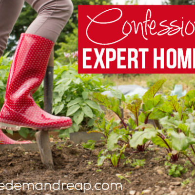 Confessions of an Expert Homesteader!