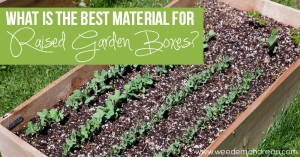 best-material-raised-garden-boxes