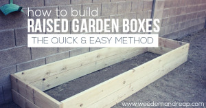 how-to-build-raised-garden-boxes