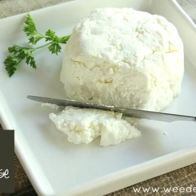 Recipe | Homemade Chevre Goat Cheese
