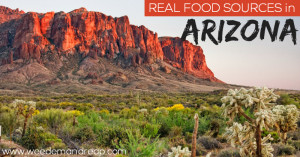 real-food-sources-in-arizona