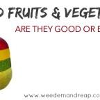 Hybrid Fruits & Vegetables good or bad