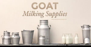goatmilkingsupplies800x419