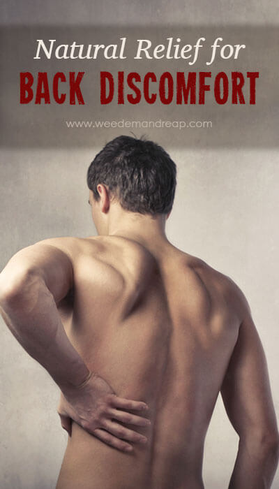 Natural Relief for Back Discomfort || Weed 'Em and Reap