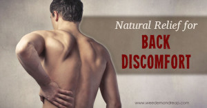 Natural Relief for Back Discomfort