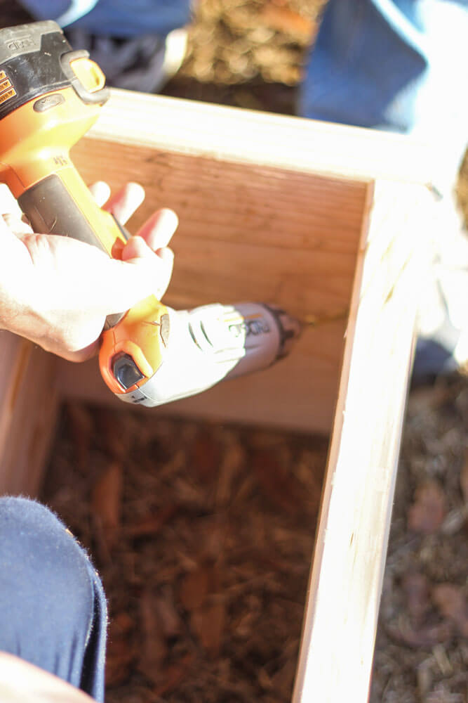 closeup of hands drilling the interior of a garden box
