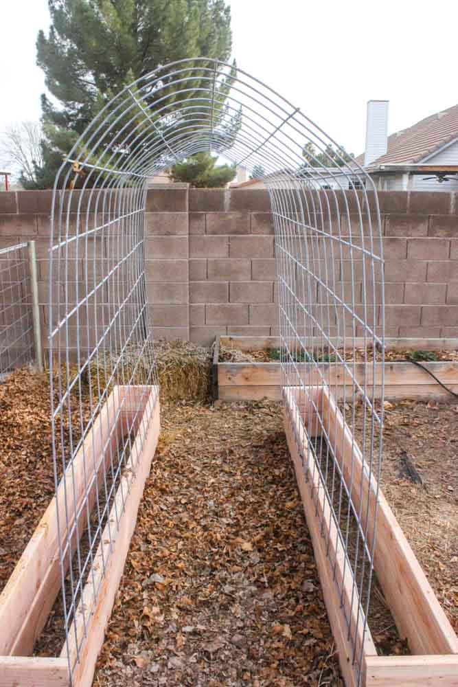 How To Make A Trellis Amp Raised Garden Box Combo