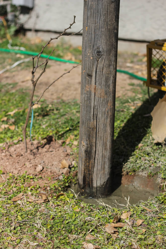 close shot of a post standing in wet concrete