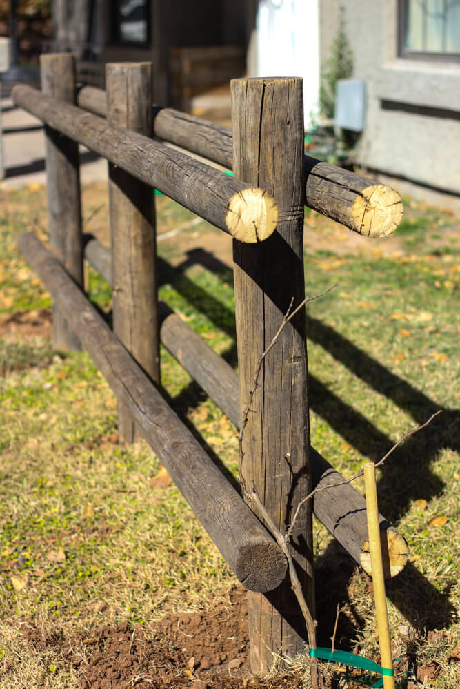 close shot of arbor in backyard with two rows of adjoining logs implemented on either side