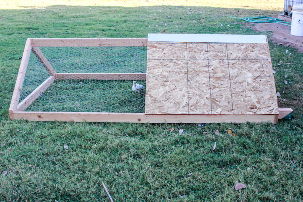 side view of chicken tractor with small white bird inside