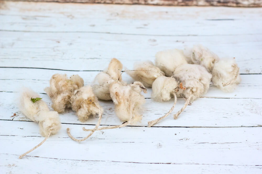 row of wool tampons on white wooden floor
