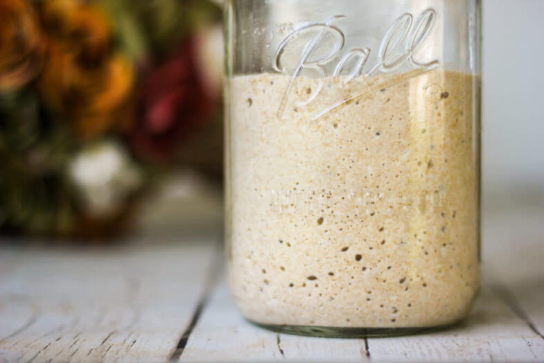 How to make a Wild Yeast Starter {To Rise Bread Naturally} | Weed 'Em and Reap