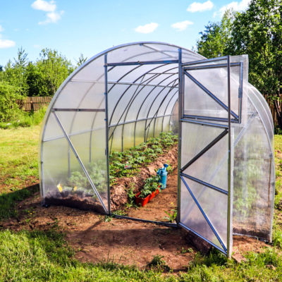 How to Build a Greenhouse! {everything you need to get started}