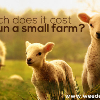 How much does it cost to run a small farm